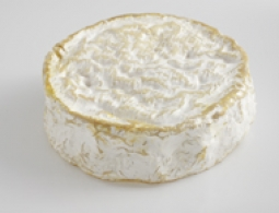 Fromages du monde - Coulommiers